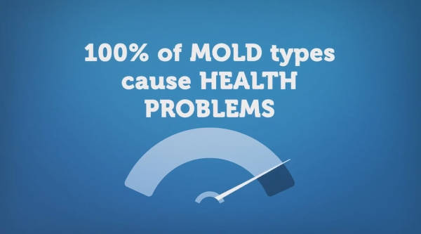 All Molds Can Create Health Issues; Winter Park Florida