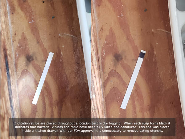 Dry Fog Mold Removal Test Strips Before and After: Orlando, Florida